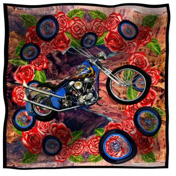 scarf canyon moto